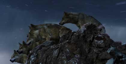 Le dernier loup de Jean-Jacques Annaud - Cine-Woman